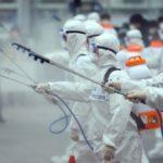 Вирусный кризис